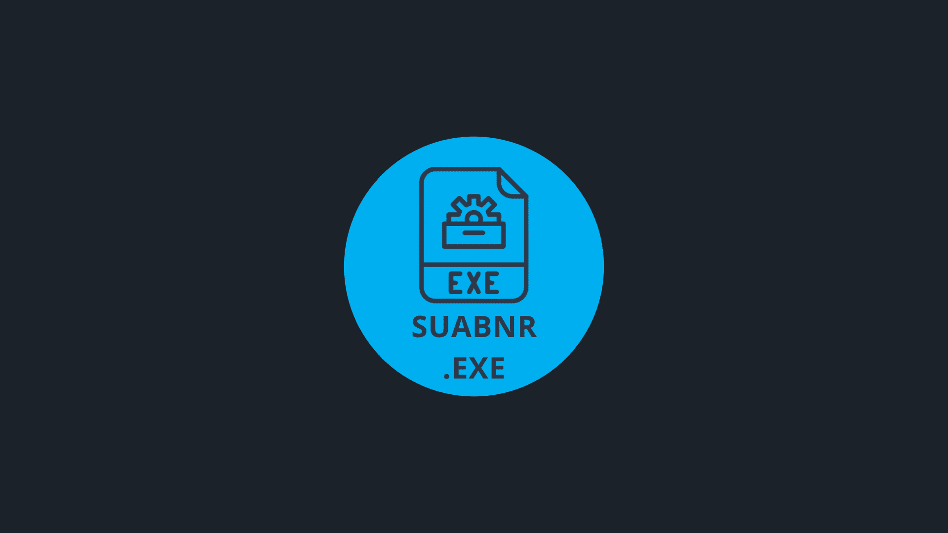 What is Suabnr.exe