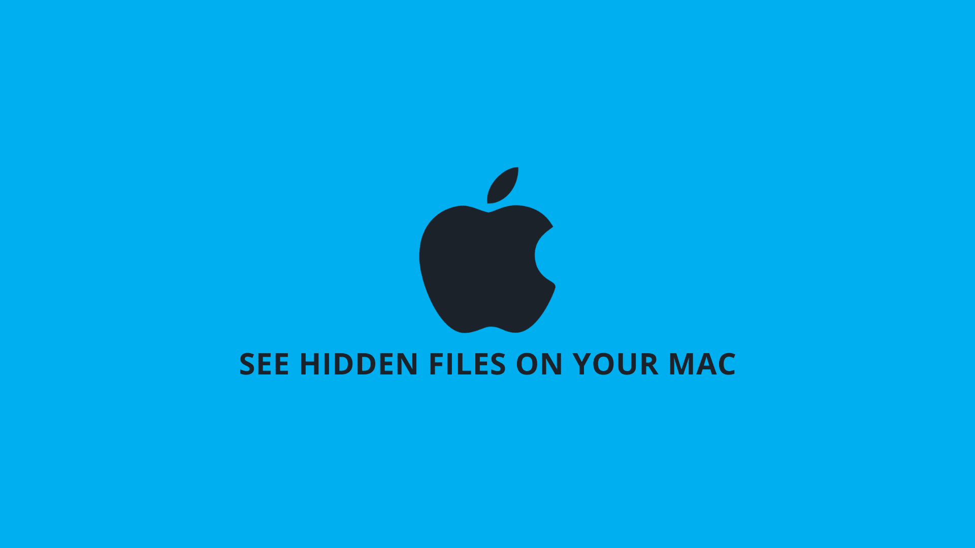 How to See Hidden Files on Your Mac