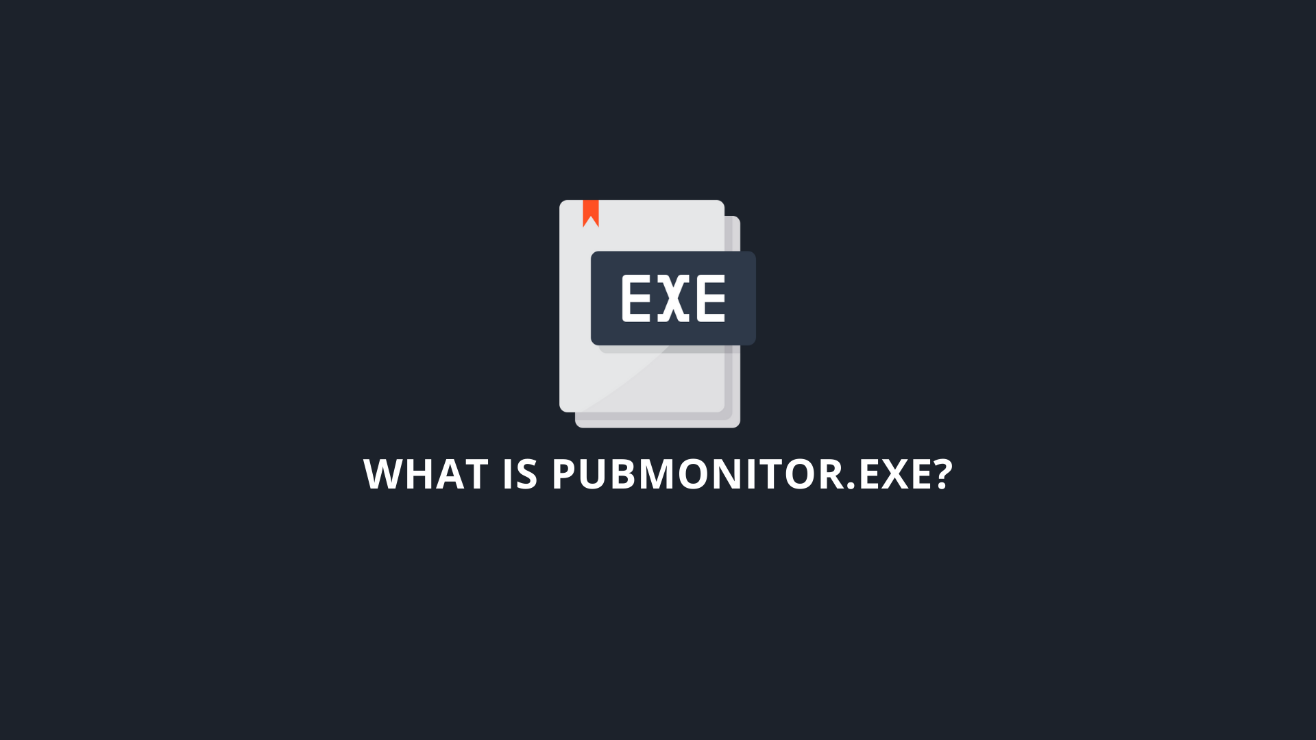 What Is PubMonitor.exe_