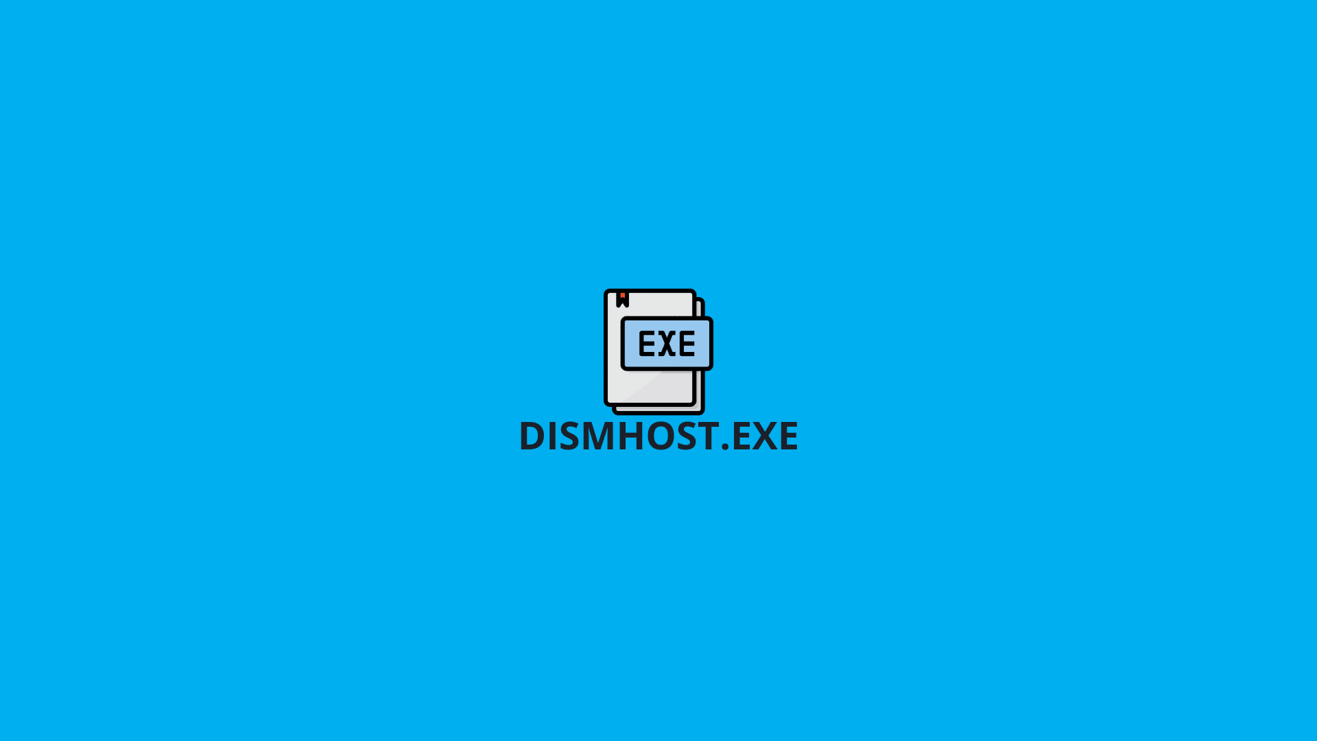 DismHost.exe