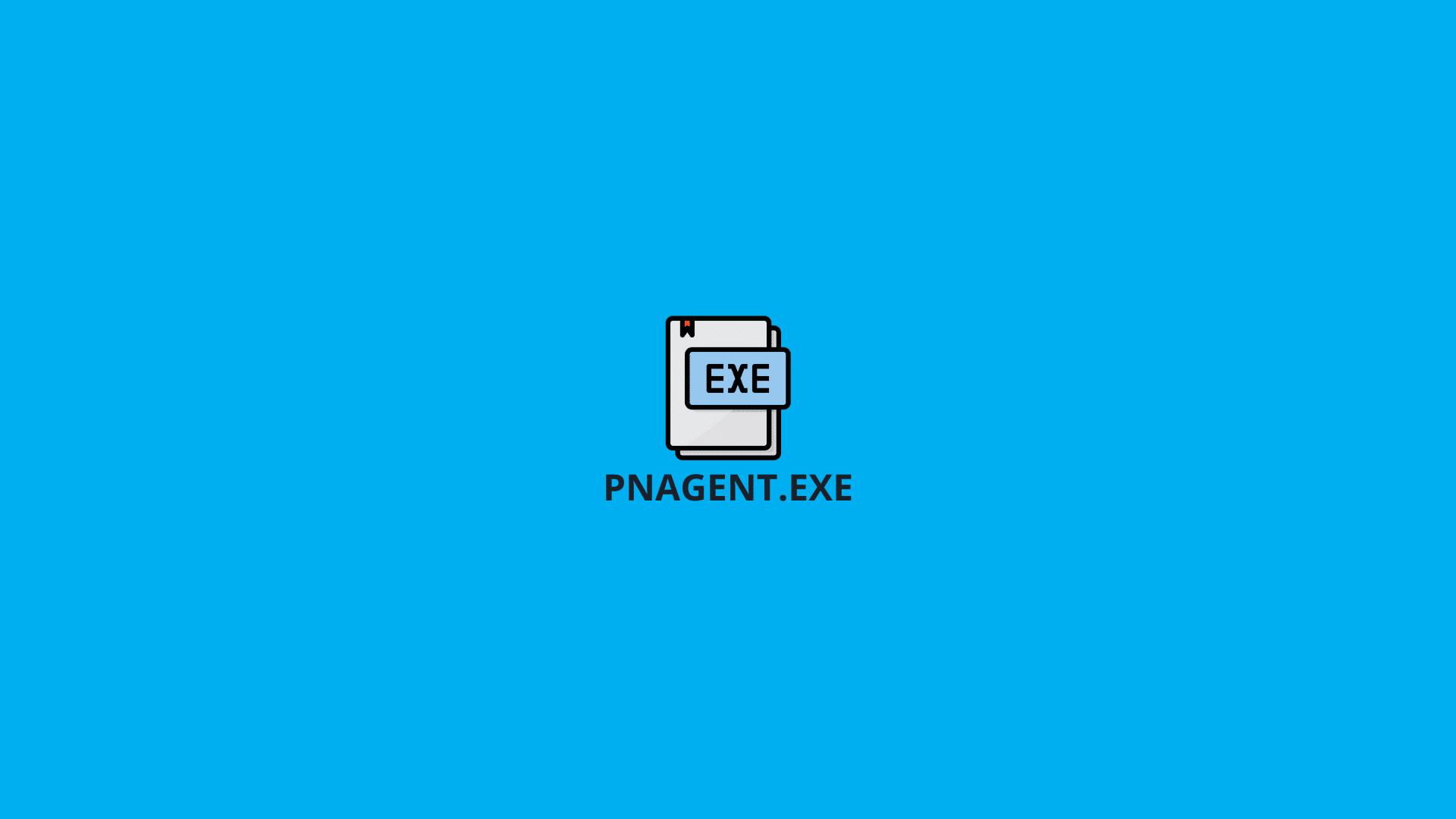 PNAgent.exe